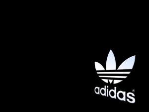 http://www.dna.com.vn/wp-content/uploads/2017/07/060610-adidas.jpg